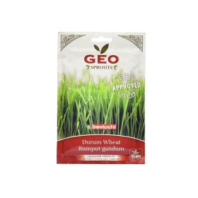 Organic Wheat (Sen.Cappelli) Sprout Seed Geo 80 g